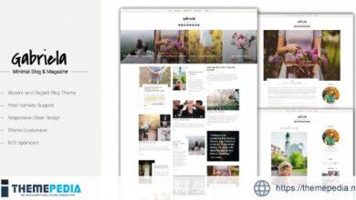 Gabriela – Crafted Blog WordPress Theme [nulled]