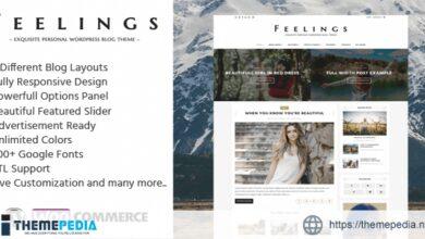 Feelings – Exquisite Personal WordPress Blog Theme [Free download]