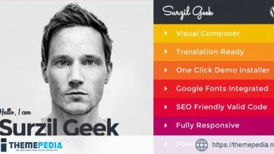 Geek – Personal Resume & Portfolio WordPress Theme [Free download]