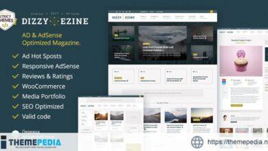 DizzyMag – Review WordPress Theme [Free download]