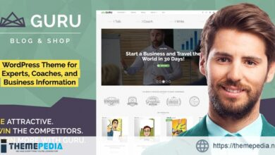 GuruBlog – Business Blog & Shop WordPress Theme for Experts [Free download]