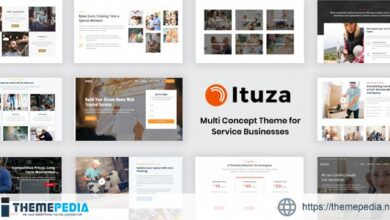 Ituza – Multi-Concept Theme for Service Businesses [Free download]