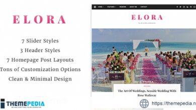 Elora – Clean & Modern WordPress Blog Theme [Free download]