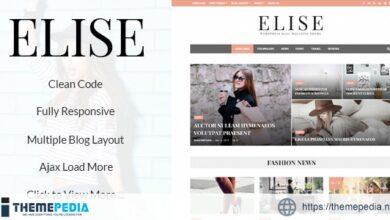 Elise – Wonderful WordPress Blog and Magazine [Latest Version]