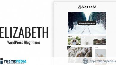 Elizabeth – Blog Theme for WordPress [Free download]