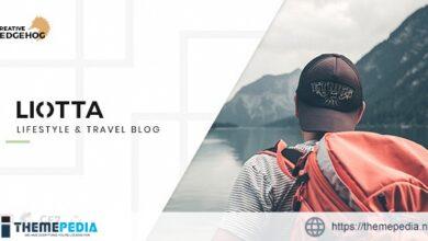 Liotta – a Responsive Blog Theme For WordPress [Updated Version]
