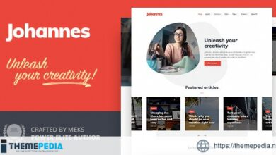 Johannes – Personal Blog Theme for WordPress [Updated Version]