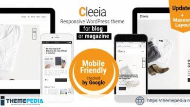 Cleeia. Responsive Wordpress theme for blog or magazine [Free download]