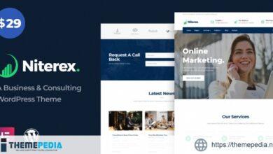 Niterex Business & Finance WordPress Theme [Free download]