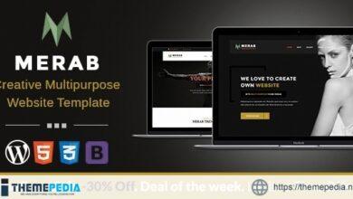 Merab – Creative Multipurpose WordPress Theme [Free download]