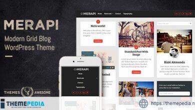 Merapi – Modern Grid Blog Theme [Free download]