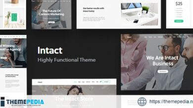 Intact – Multi-Purpose WordPress Theme [Free download]