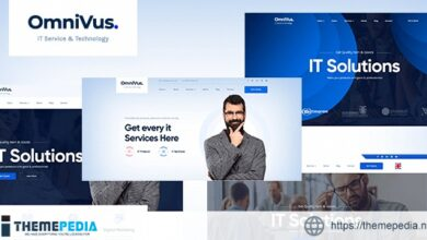 Omnivus – IT Solutions & Services WordPress Theme [Free download]