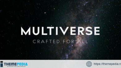 Multiverse – High Performance Creative WP Theme [Free download]