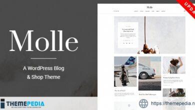Molle – A Responsive Blog & Shop WordPress Theme [Free download]