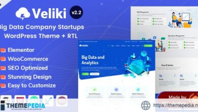 Veliki – Big Data Company WordPress Theme [nulled]