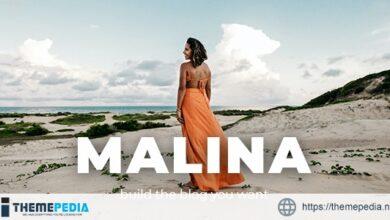 Malina – Personal WordPress Blog Theme [Free download]
