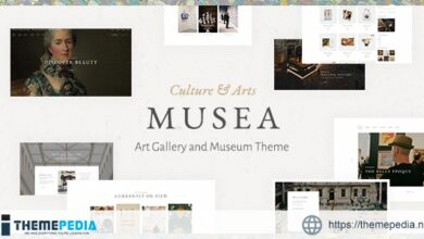 Musea – Art Gallery and Museum Theme [Free download]