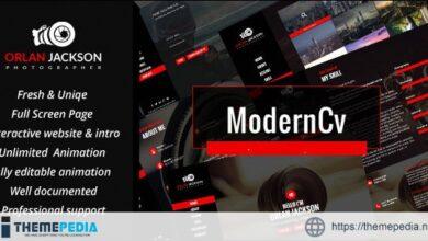 Modern CV Personal Portfolio WordPress Theme [Free download]