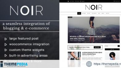 Noir – Blog & Shop WordPress Theme [Free download]