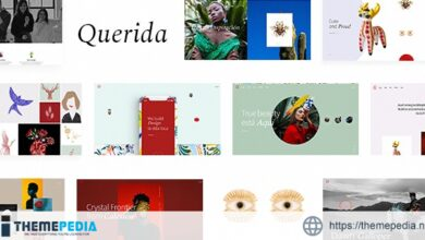 Querida – Creative Agency Theme [Free download]