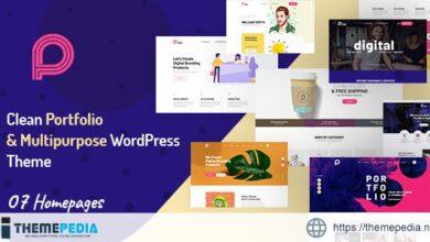 Picko – Clean Portfolio WordPress Theme [Updated Version]