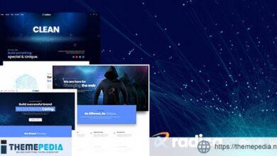 Radica – Creative MultiPurpose WordPress Theme [Free download]
