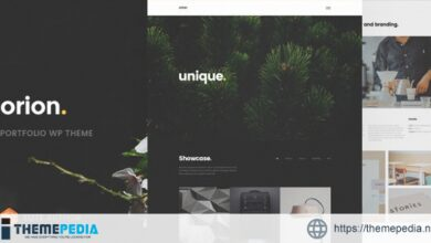 Orion – Minimal Portfolio WordPress Theme [Updated Version]