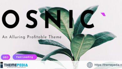 Osnic – AD Optimized Blog-Magazine Theme for Adsense & Affiliate [Free download]
