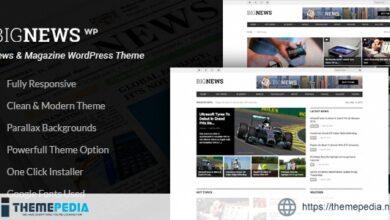 Newspaper & Magazine WordPress – BigNews [Free download]