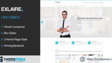 Exclaire – Personal Development Coach WordPress Theme [Free download]