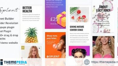 Splent – Responsive Multi-Purpose WordPress Theme [Free download]