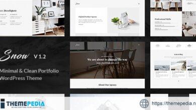 Snow – Minimal & Clean WordPress Portfolio Theme [Updated Version]