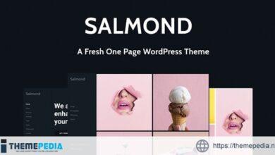 Salmond – A Fresh One Page WordPress Theme [Free download]