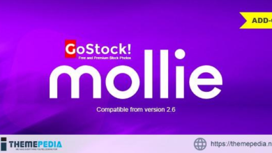 Mollie Payment Gateway for GoStock – [Free Codecanyon Script download]