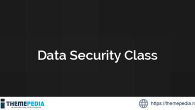 Data Security Class – [Codecanyon Scripts]