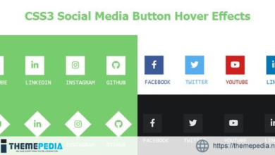 CSS3 Social Media Button Hover Effects – [100% Nulled Script]
