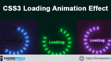 CSS3 Loading Animation Effect – [100% Nulled Script]