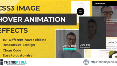 Savy – CSS3 Image Hover Animation Effects – [Download Torrent]